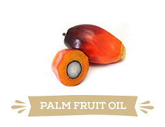 Palm fruit oil